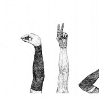 The hand signals I have learnt in that summer